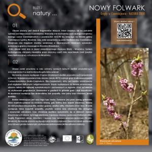 01_nowy_folwark_inton