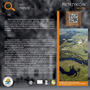 03_pietrzyków_inton